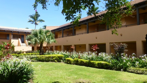 Sheraton Hotel, Denarau, Nadi, Fiji  P1130521