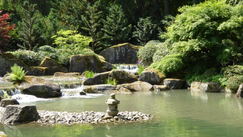 A waterfall in the Japanese Garden at Augsburg Botanic Gardens