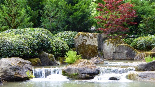 Another view of the peaceful Japanese Gardens.