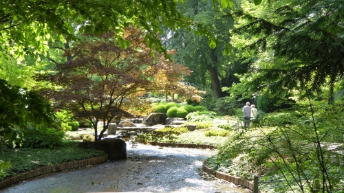 Another section of the Japanese Gardens