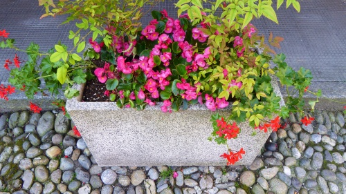 Flower boxes adorn pebbled streets.