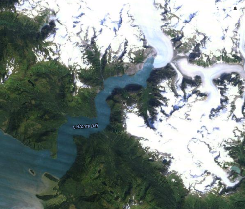 Google Sattelite photo of Glacier Bay Alaska